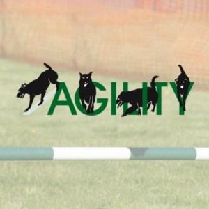 Logo-Agility-Dog-Training