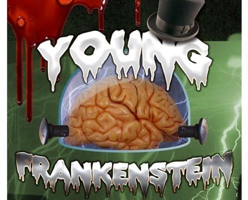 Poster-Richey-Suncoast-Theatre-2015-Young-Frankenstein